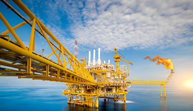 Oil and Gas Security - Maritime Security - Neptune P2P Group