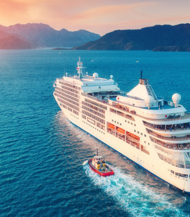 Cruise Line Protection in the Indian Ocean